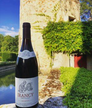Vin d'Irancy